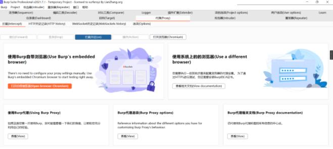 BurpSuiteV2021.7.1破解版